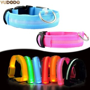 Best LED Dog Collar: It Keeps Your Dog Safe from Fast Traffic During The Night!